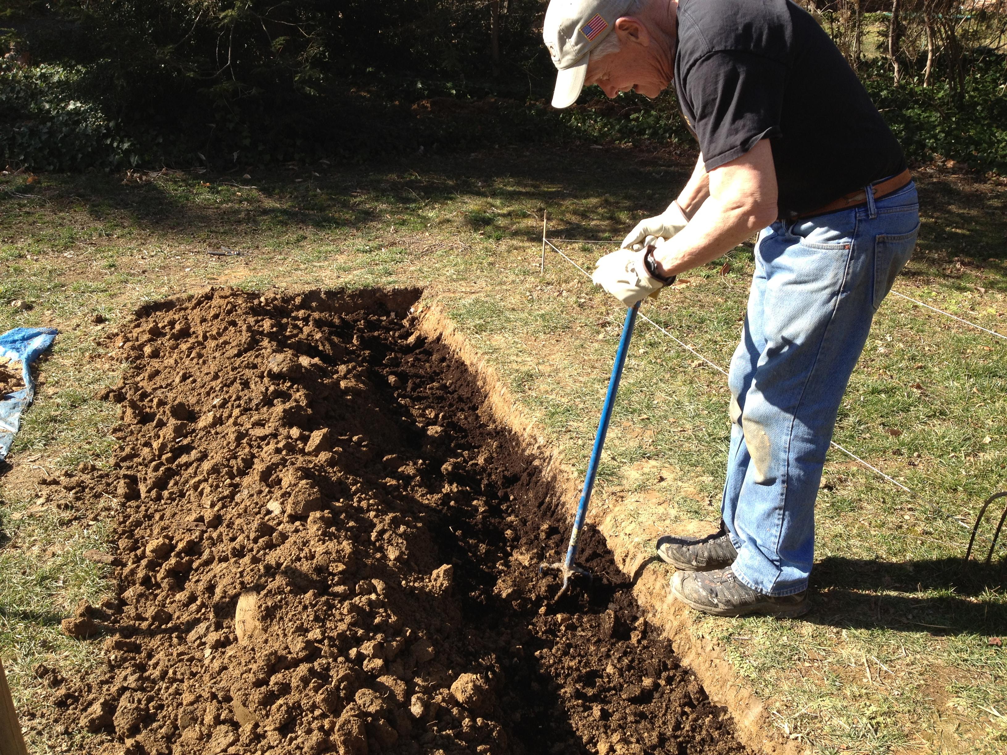 bumper crop soil amendment roots to blooms. Black Bedroom Furniture Sets. Home Design Ideas