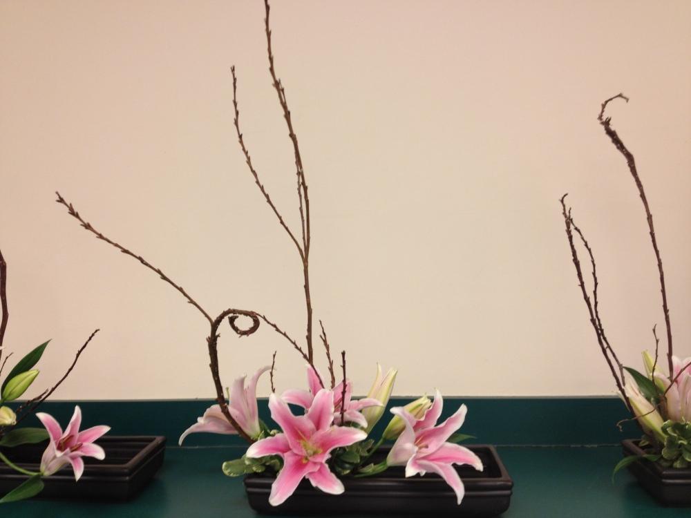 intro to ikebana - longwood - day two (5/6)