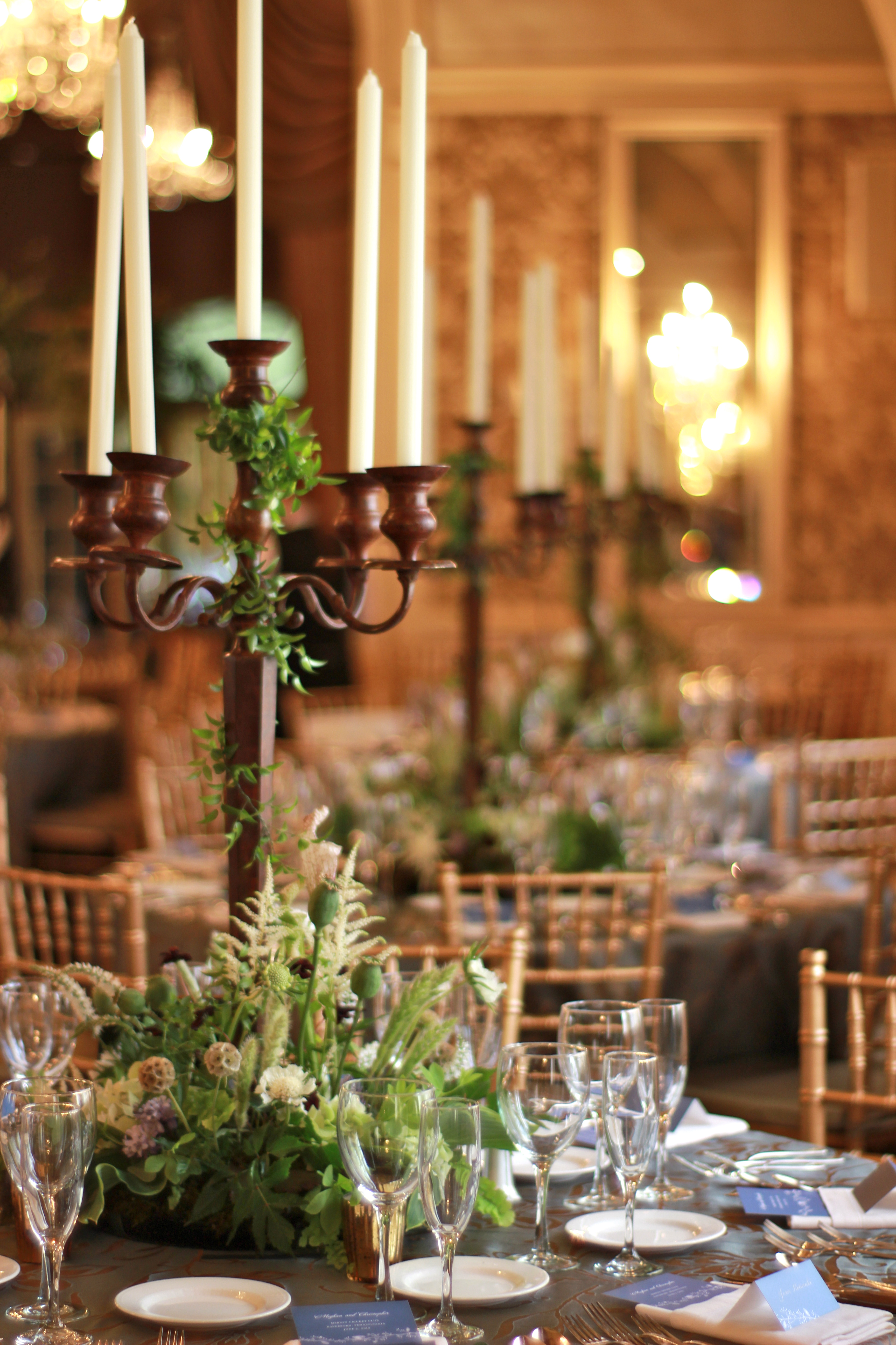 Wedding centerpiece roots to blooms