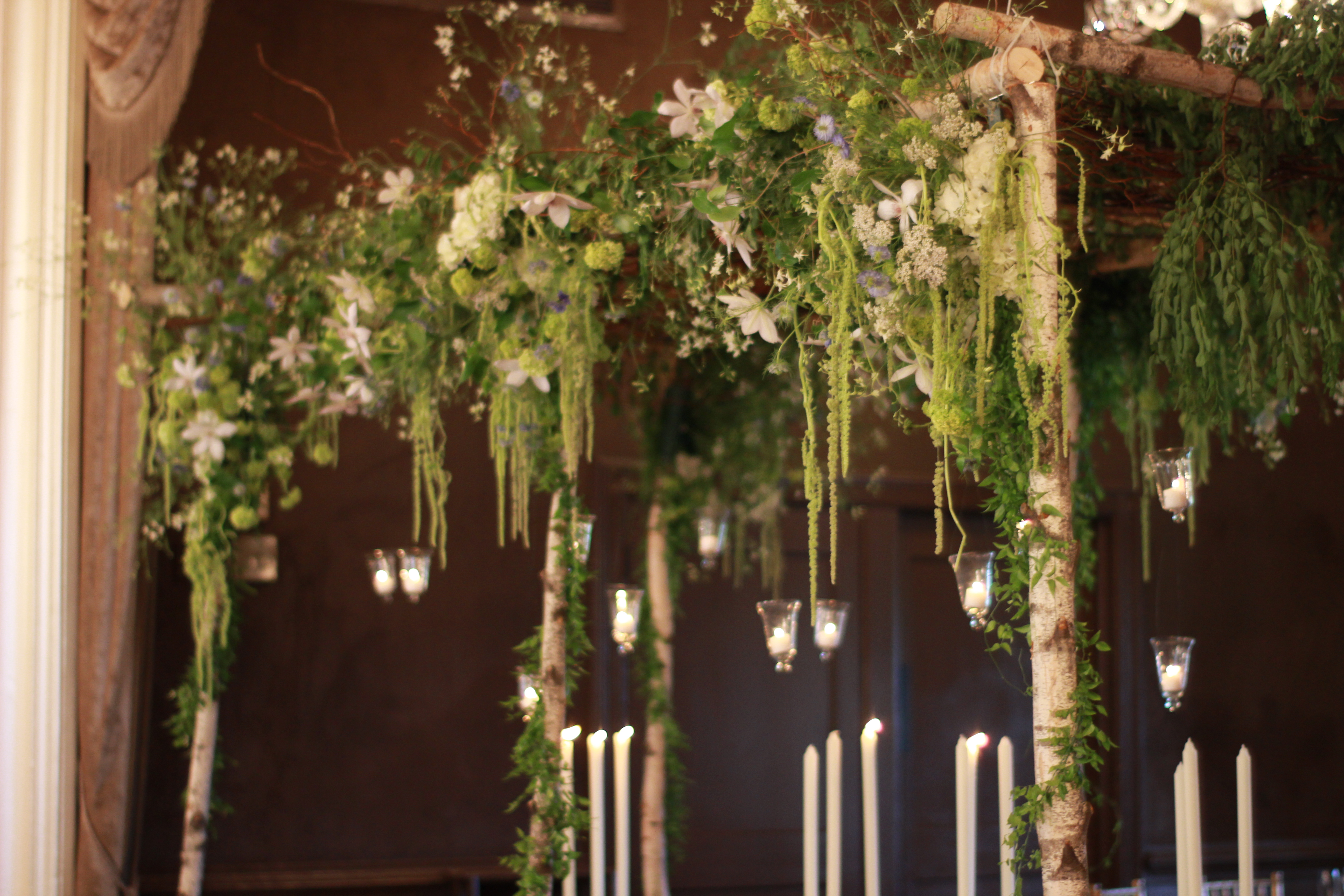Bridal arbor roots to blooms for A decoration that is twisted intertwined or curled