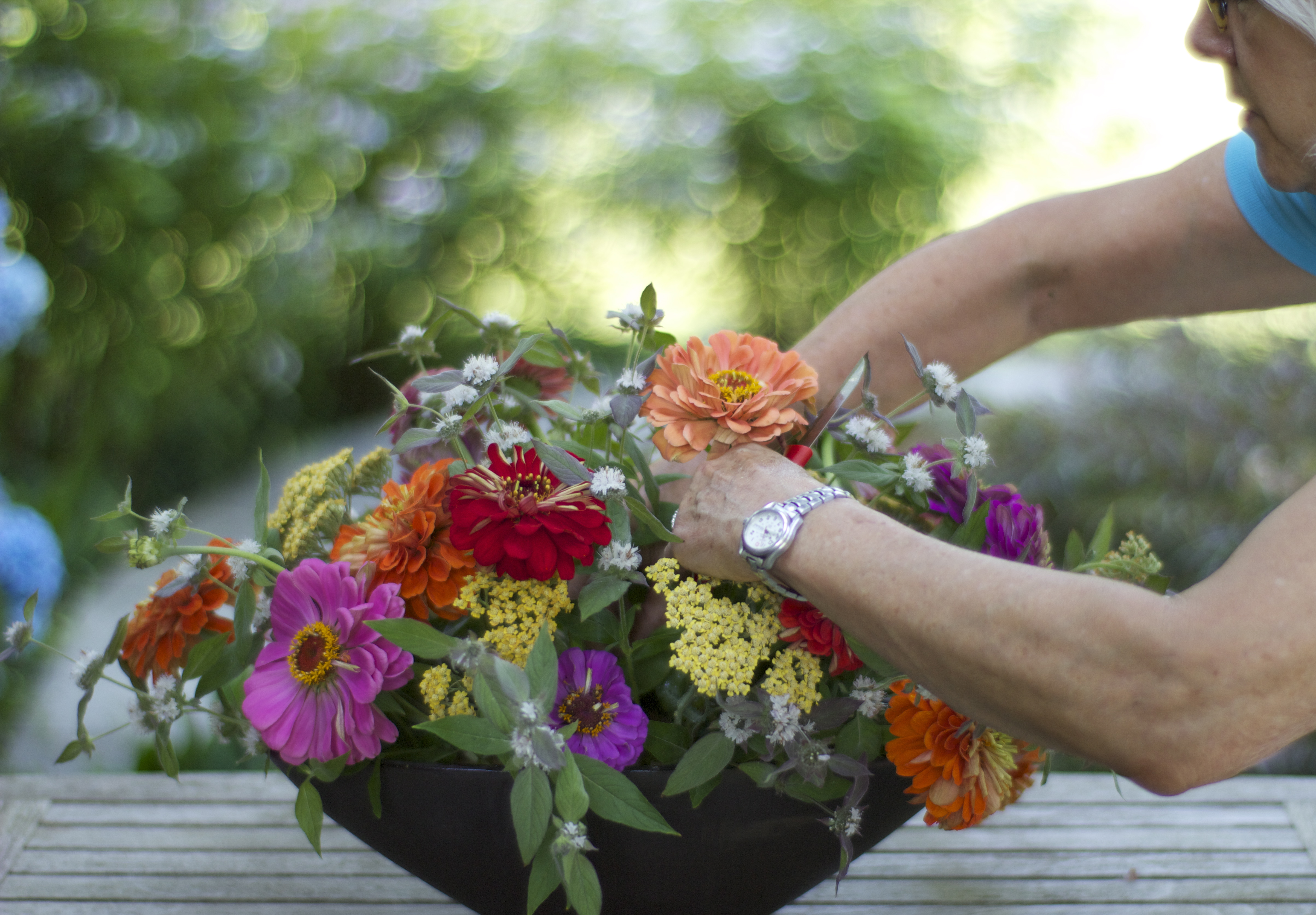 Floral Design Roots To Blooms
